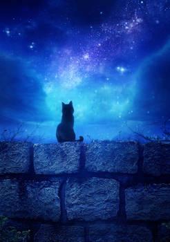 Unseen Stars at Night