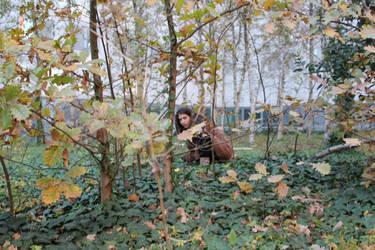 fall by Eilesselas