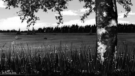 Field by NuclearJackal