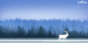 Fennoscandian Landscape