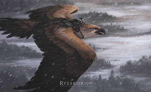 Winter Sound by Ryzakier