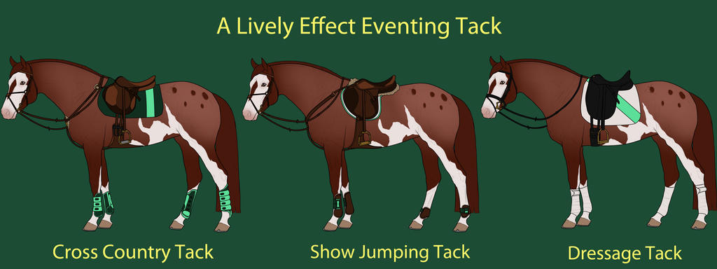 A Lively Effect Eventing Tack by cheddarbug