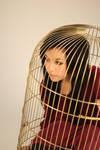 birdcage III