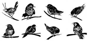 finch_sparrow2
