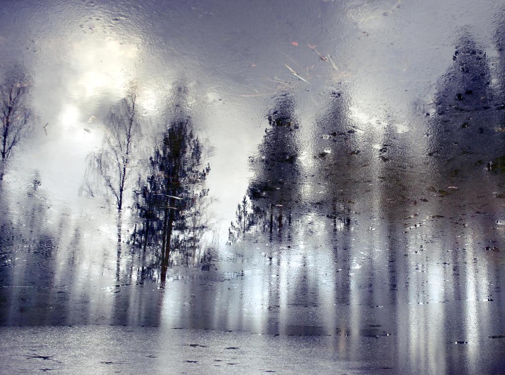 Ghostwood by busangane