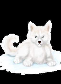 Husky Reward