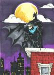 Batman and Nightwing.