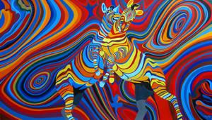 Zebradelic by PascalRoy