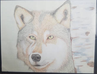 Wolf Pencil by BiotTechElf