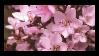 Flower Stamp #2 by aka-finley
