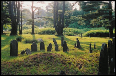 SImo - Rolling Graves by simolean14