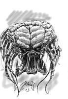 predator by cazadordeaventuras