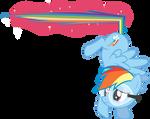 Rainbow Dash! STOP!