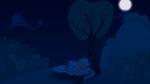 A Solemn Summer Night - Vector w/ Background