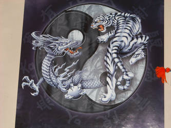 Yin and Yang by crystalsoraauthor