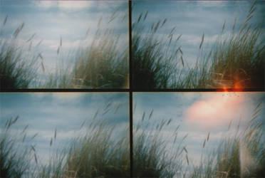 summer 2008... 3 by kitleen