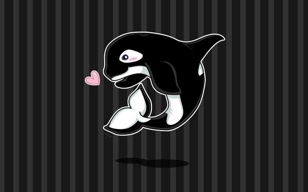 Kip the baby orca wallpaper by posiplush on deviantart kip the baby orca wallpaper by posiplush altavistaventures Images