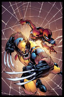 Wolverine SpiderMan cover color sample by AlonsoEspinoza