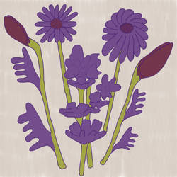 Purple-Plants