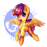 ~Scootaloo~ by N0M1
