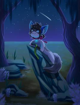 Nighttime Gazing