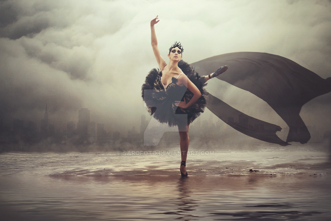 Black Swan by SaroFoto