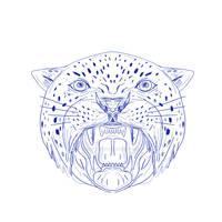 Angry Jaguar Head Drawing