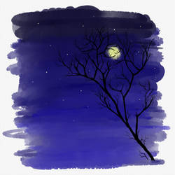 Grabbing the moon