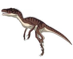 Utah Raptor (Brown)