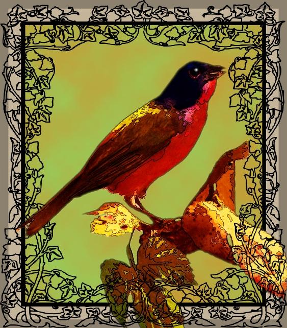 Exotic bird by FractalBee