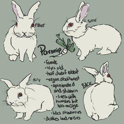 Parsnip, Comic Char Ref Sheet by Herbivoree
