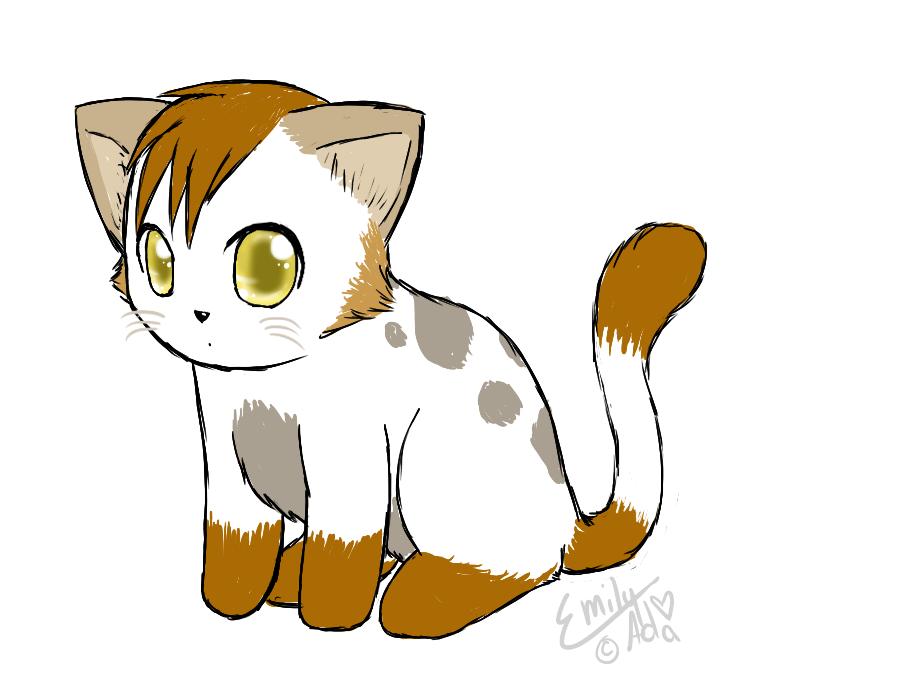 kitten Avatar