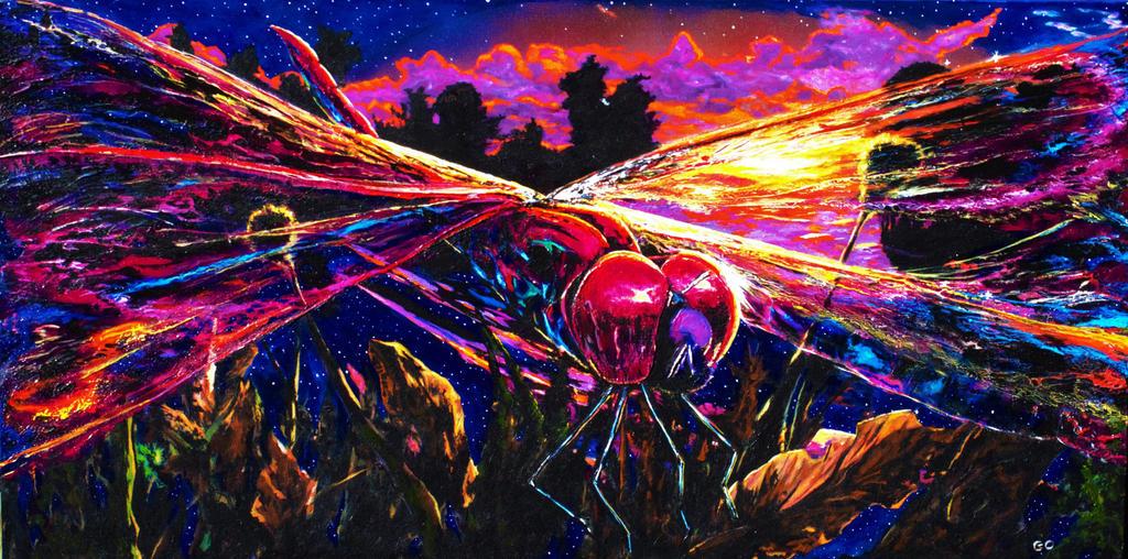 Dragonfly by GaryMOConnor