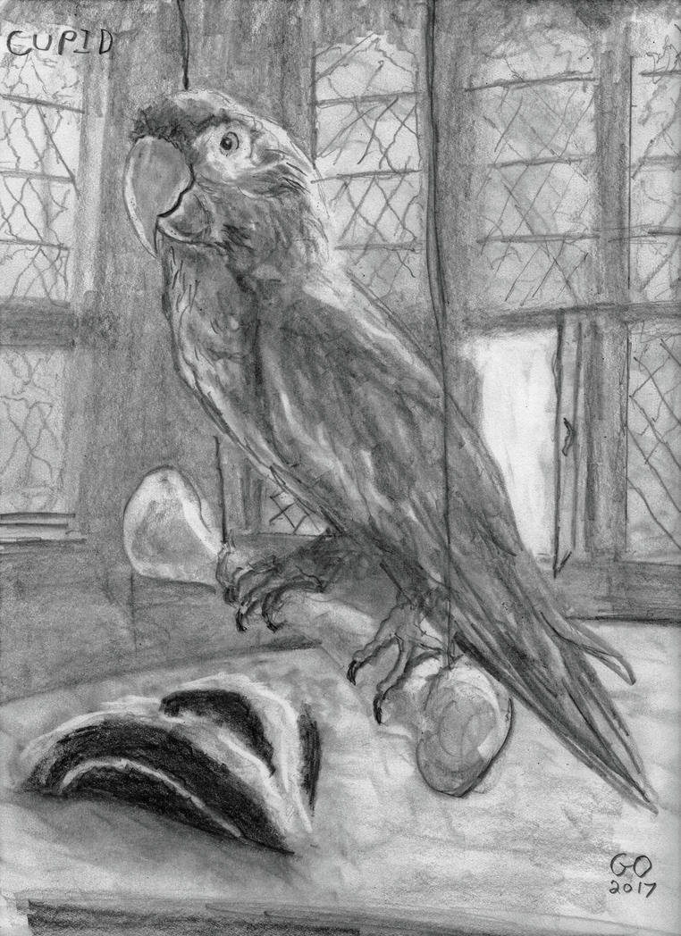 Cupid by GaryMOConnor