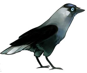 Raven-n-Glasses's Profile Picture