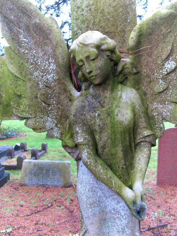 Angel by ratofthelab