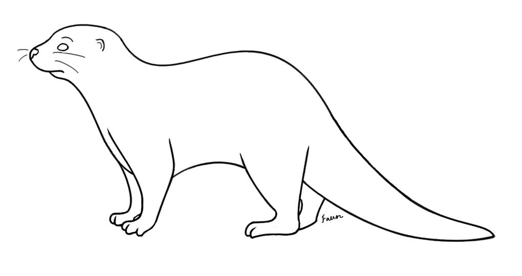 Zzve Line Art : Otter lineart by fawnflight on deviantart