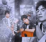LIN GENGXIN #8 // WEB