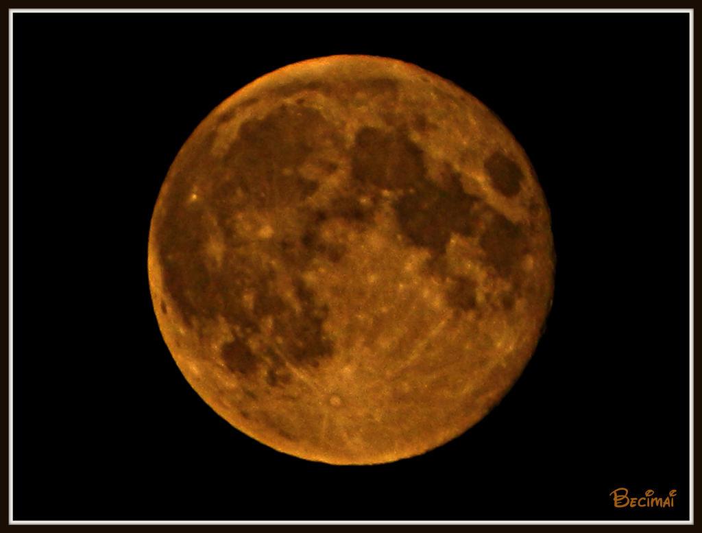 Moon by LadyAcceber
