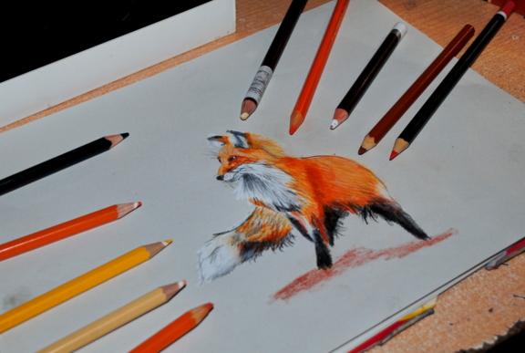 Fox colored pencil by bezag