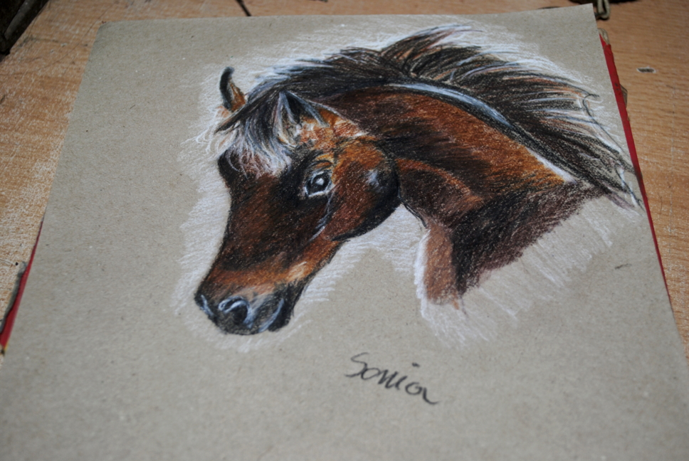 Horse pencil by bezag