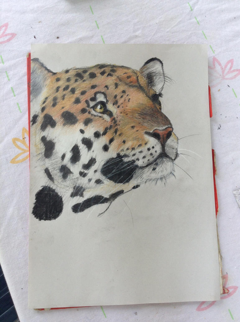 Leopard pencil by bezag