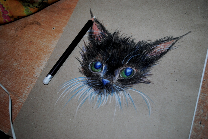 Little black cat by bezag