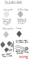 How to Draw Scales: Tutorial