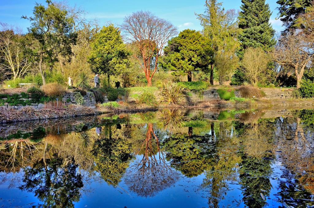 Spring in botanic garden by Aishlling