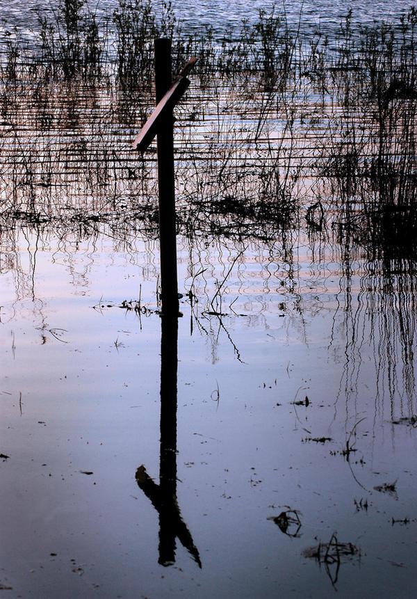 Cross Reflection by Philzang
