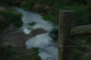 Water in the fence by Philzang