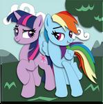 Commission: Twi-Dash Mock-up