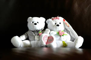 Marriage Bears