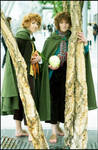 LotR Cosplay Merry Pippin 1